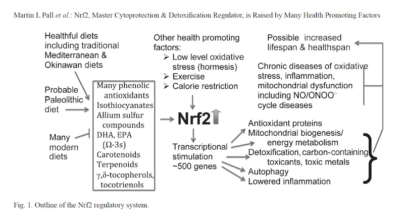 PALL-Nrf2-table1